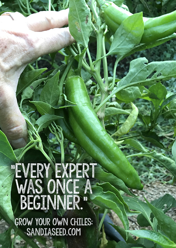 Every Expert was once a Beginner - Garden Meme