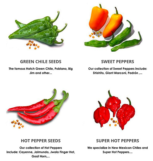 Pepper Seeds for Sale