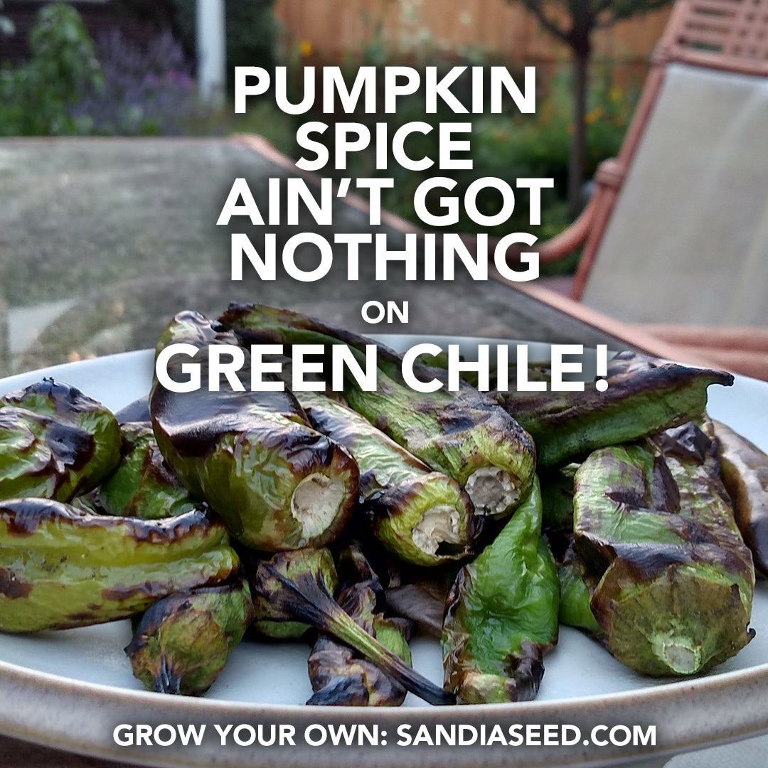 Pumpkin Spice Ain't got nothing on Green Chile!