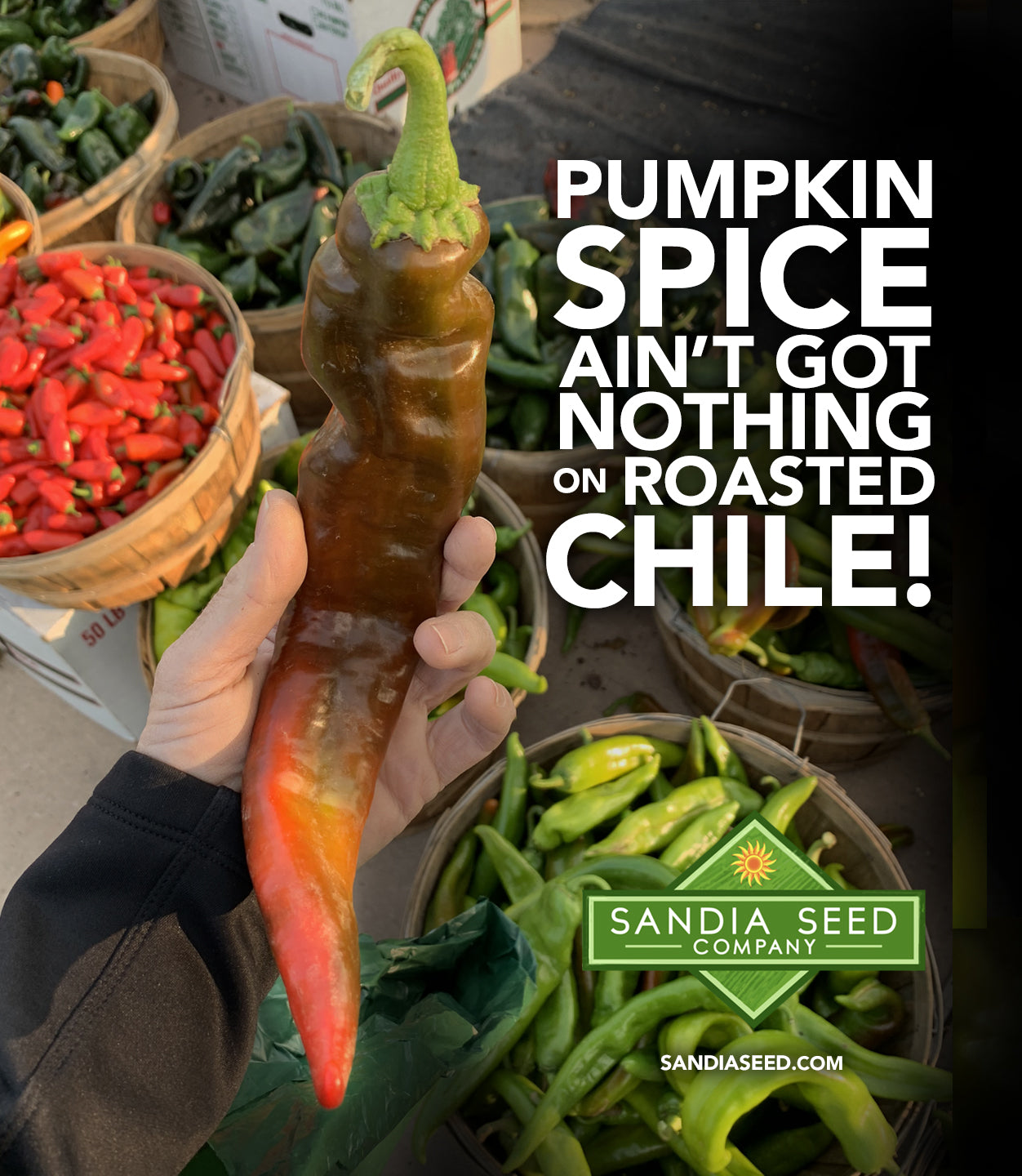 Pumpkin Spice Ain't Got Nothing on Roasted Chile!
