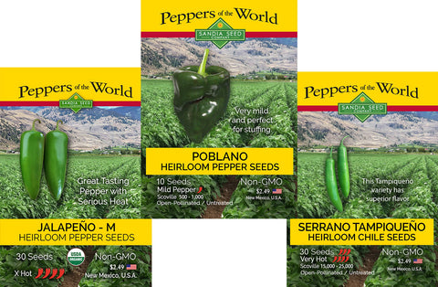 Giadone Pueblo Mirasol Hot Chile Seeds - Authentic from Colorado