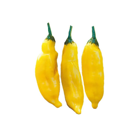 Fatalii Heirloom Pepper Seeds