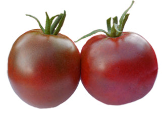 Tomato - Golden Jubilee Seeds ORG