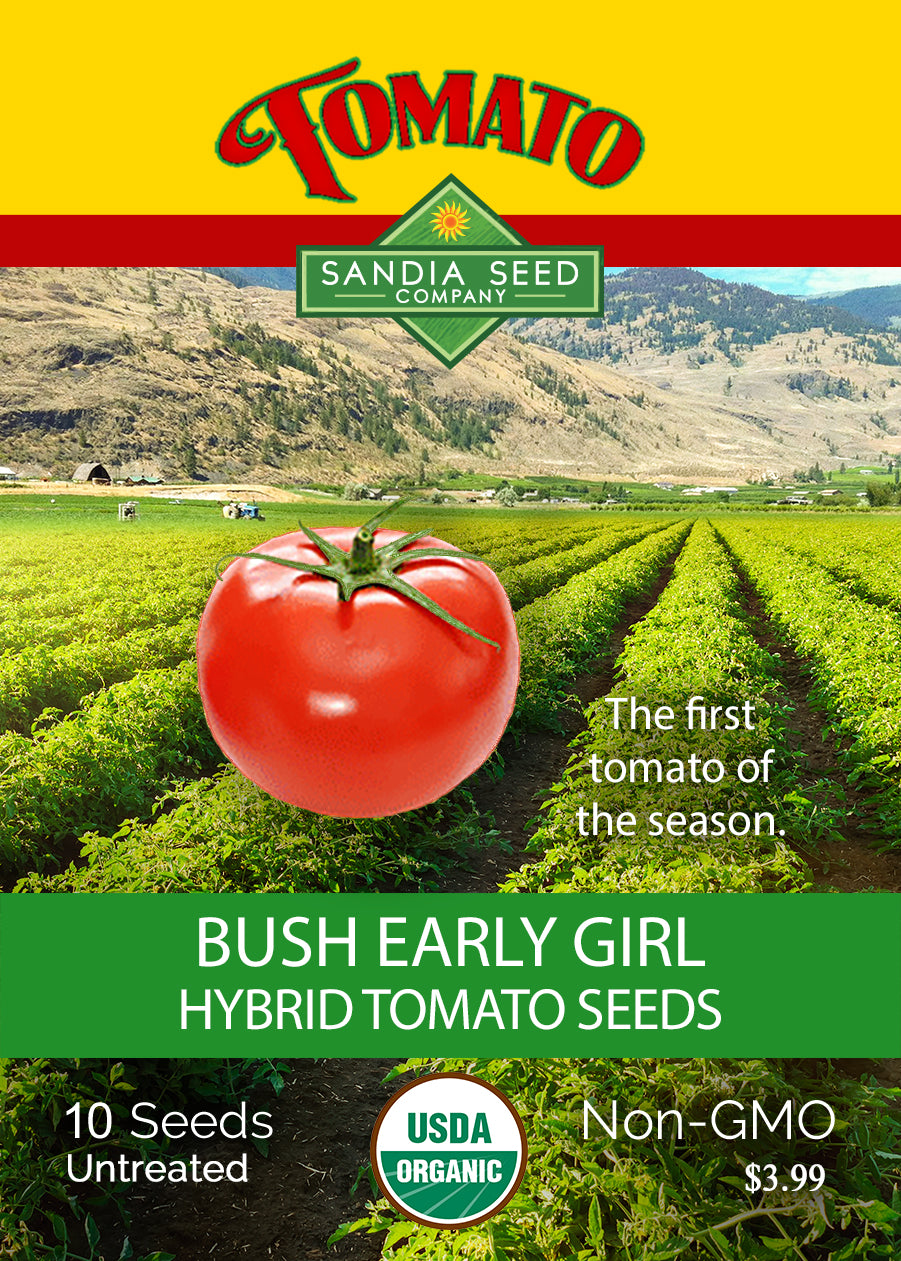 Short Season Tomato - Bush Early Girl Tomato Seeds