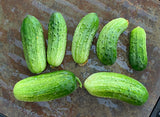 Cucumber - Homemade Pickles Seeds - Organic