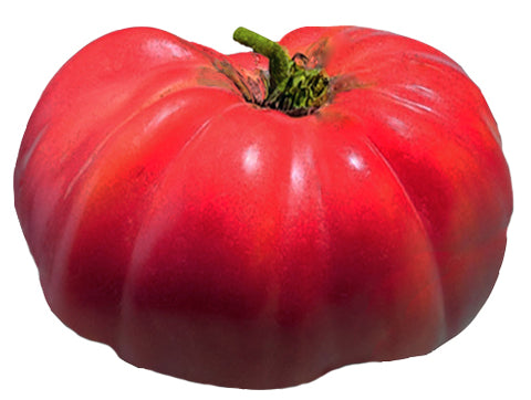 Tomato - Chocolate Cherry Heirloom Seeds ORG