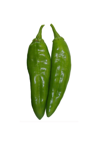 Mulato Isleño Chile - Chocolate Poblano Seeds