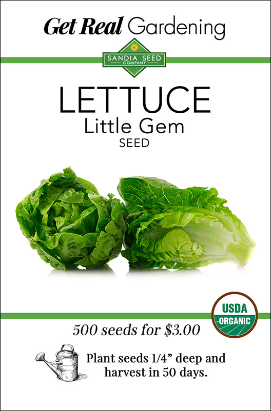 Lettuce - Little Gem Seeds - Organic