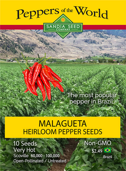 Malagueta Heirloom Pepper Seeds - Sandia Seed Company
