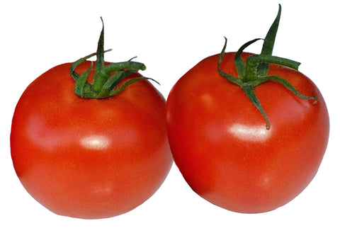 Tomato - Indigo Rose Heirloom Seeds ORG