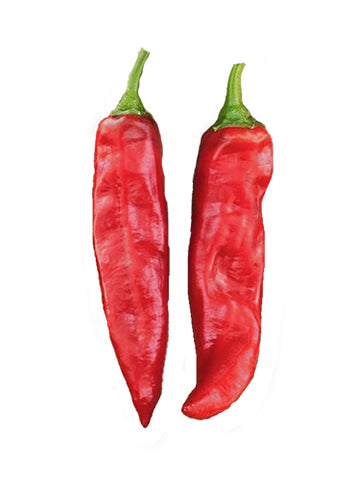 Hatch Red Hot - Sandia Hot - 2 oz. Seeds - BULK