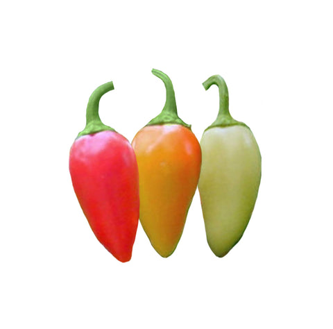 Jalapeño Orange Spice NuMex Seeds