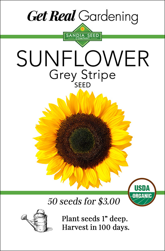 Sunflower Seeds for Pollinator Gardens