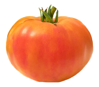 Tomato - Virginia Sweets Heirloom Seeds ORG - Sandia Seed Company