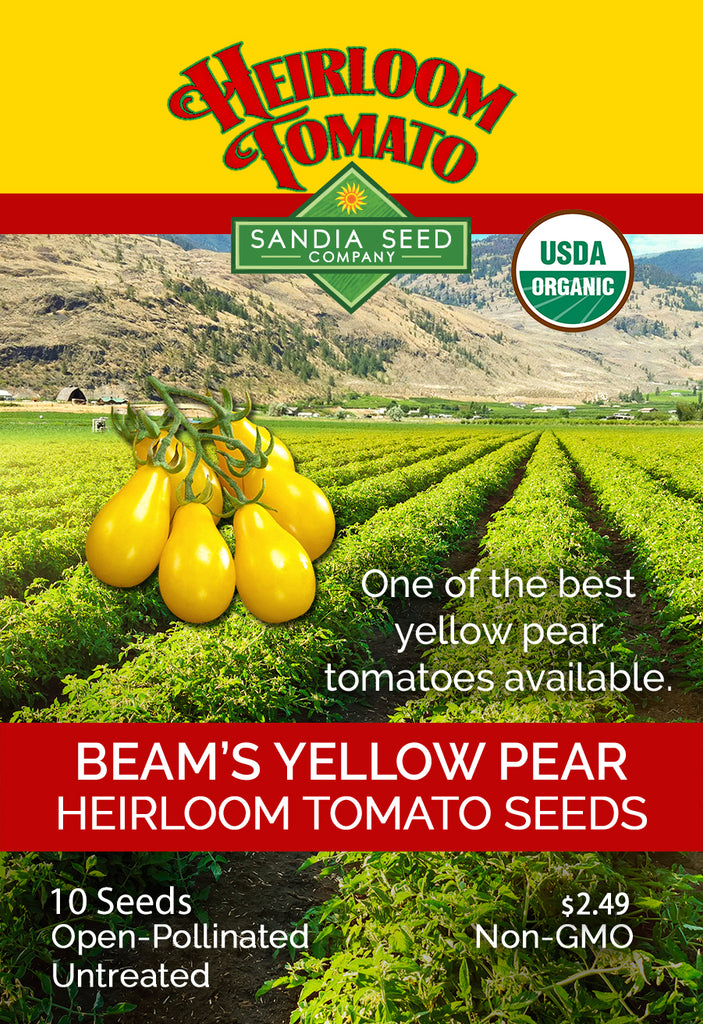 Tomato - Yellow Pear Beam's ORG Heirloom Seeds ORG - Sandia Seed Company