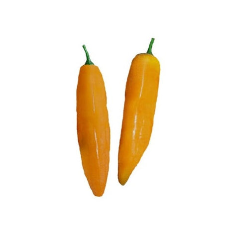 Aji Limo / Lemon Drop Pepper Seeds