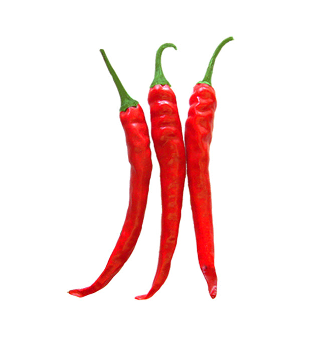 Cayenne - Ring of Fire Pepper Seeds – Sandia Seed Company