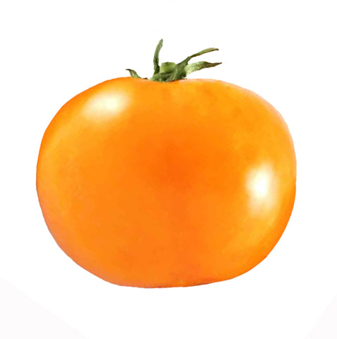 Tomato - Sweet Million Hybrid Seeds