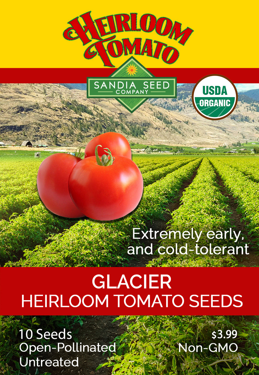 Fastest Growing Tomato Seeds - Glacier Tomato