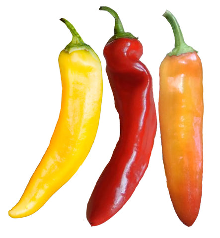 Anaheim Pepper Seeds - 1 oz. - BULK