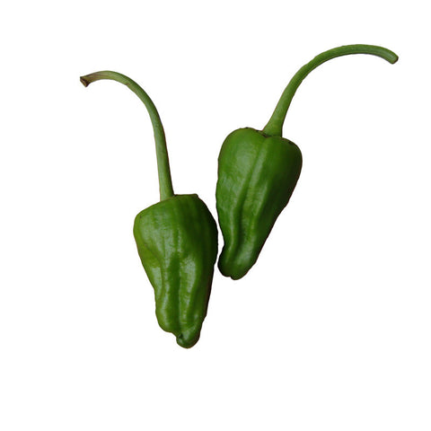 Cubanelle - Sweet Pepper Seeds