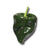 Poblano - Heirloom Pepper Seeds - Sandia Seed Company