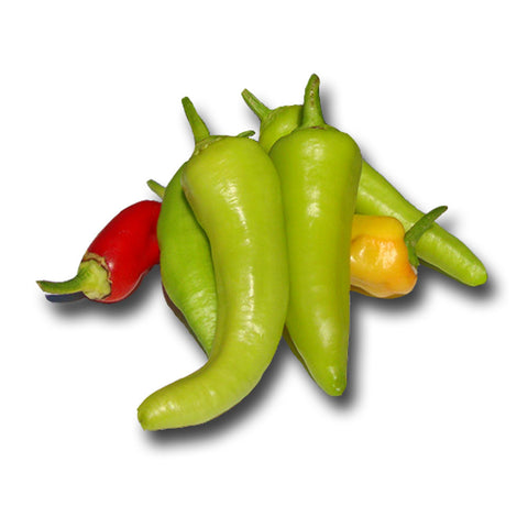 Bell Golden Cal Wonder Sweet Pepper Seeds