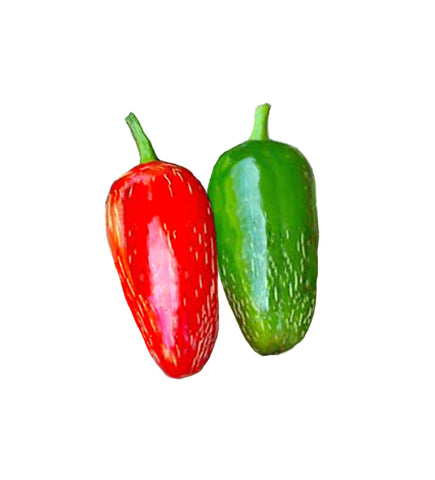 Manzano / Orange Rocoto - Heirloom Pepper Seeds