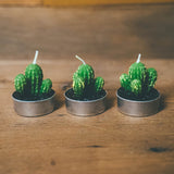 Mini Cacti Candles