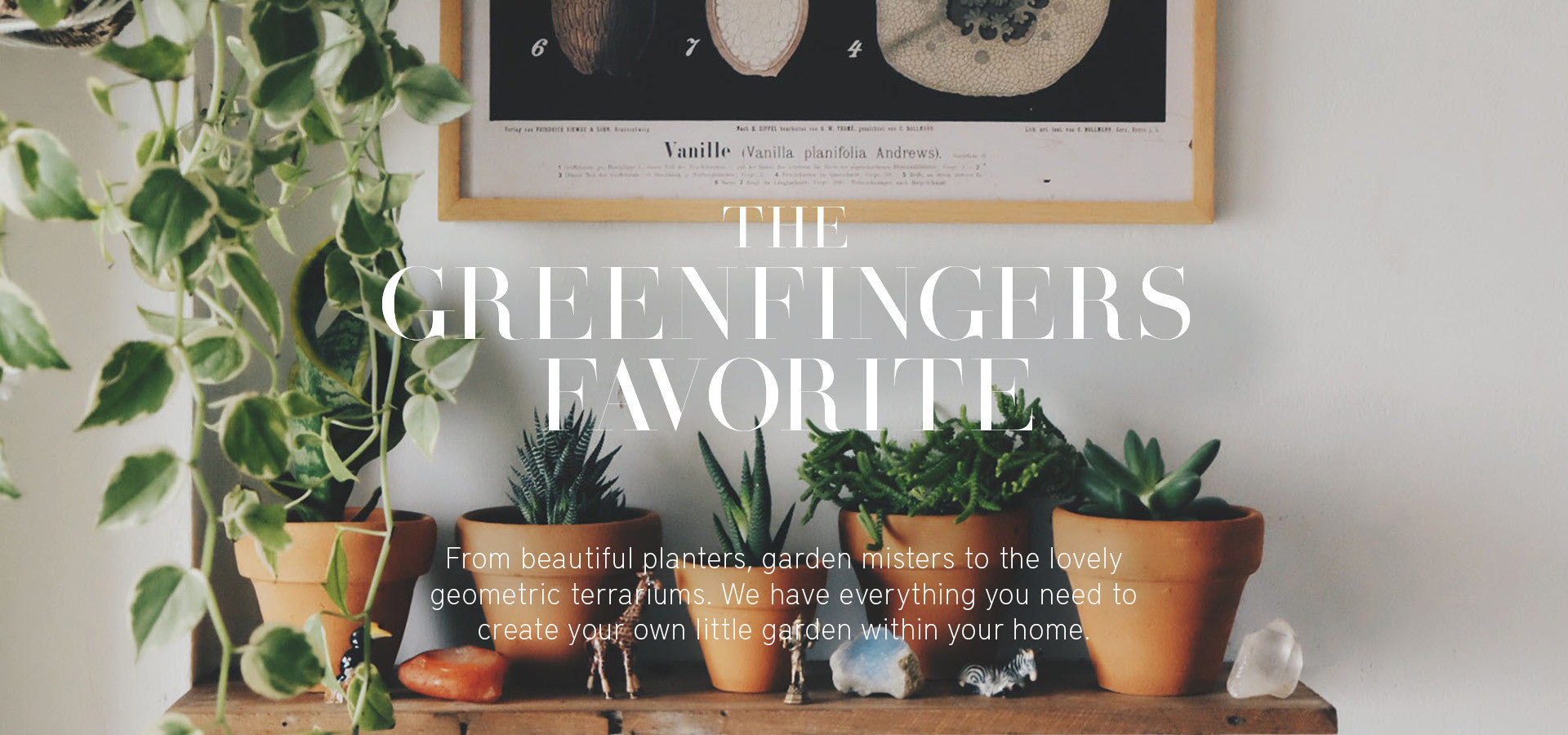 The Greenfingers Favorite