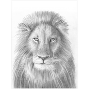 The Lion | Art Print