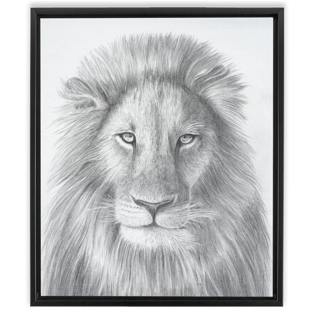 The Lion | Framed Canvas Wraps
