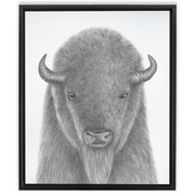 The Buffalo | Framed Canvas Wraps