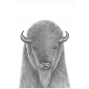 The Buffalo | Art Print