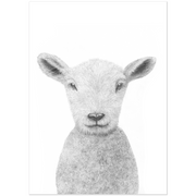 The Lamb | Art Print