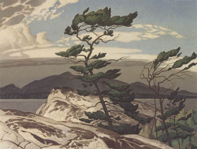 White Pine - note card - A.J. Casson