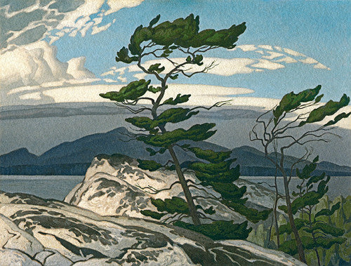White Pine - small giclee - A.J. Casson