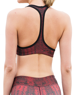 Serpente Sports Bra (Red)