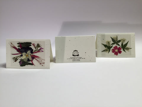 Enclosure Cards (set of 6)