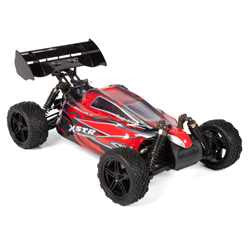 Micro Gear hi speed 4wd RC Buggy
