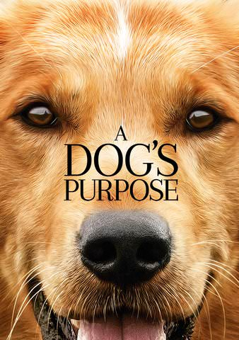 A Dog's Purpose itunes HD (Ports to VUDU/MA)
