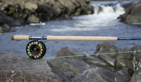 Thomas & Thomas DNA Spey Rod