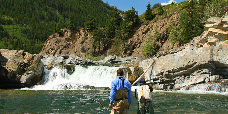 Out Fly Fishing outfitters Guided Trips: Mountain Walk & Wades