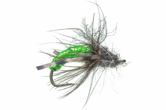 Caddis Nymphs: Taylor's Gut Instinct Nymph (all colors)