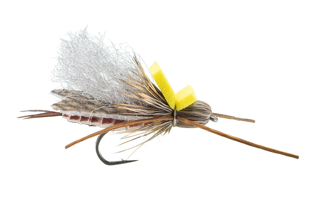 Stoneflies: Trina's Carnage Golden Stone