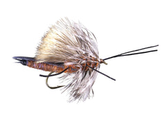 Stoneflies: Big-R-Bug Golden Stone