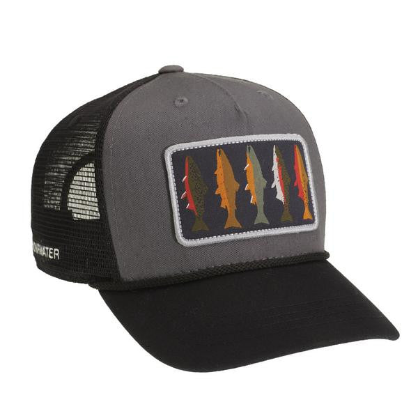 Rep Your Water Hat  TU Costa 5 Rivers Collab Hat  ef9cbb475