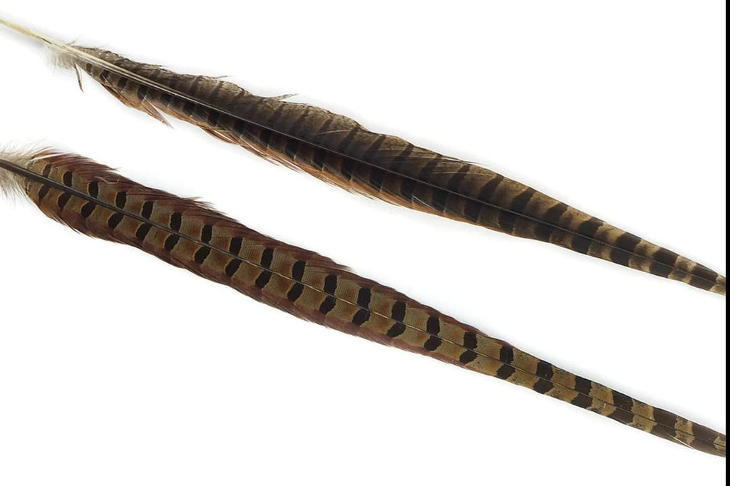 Pheasant Tail Feathers - Assorted