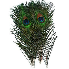 Wapsi Peacock Eyes