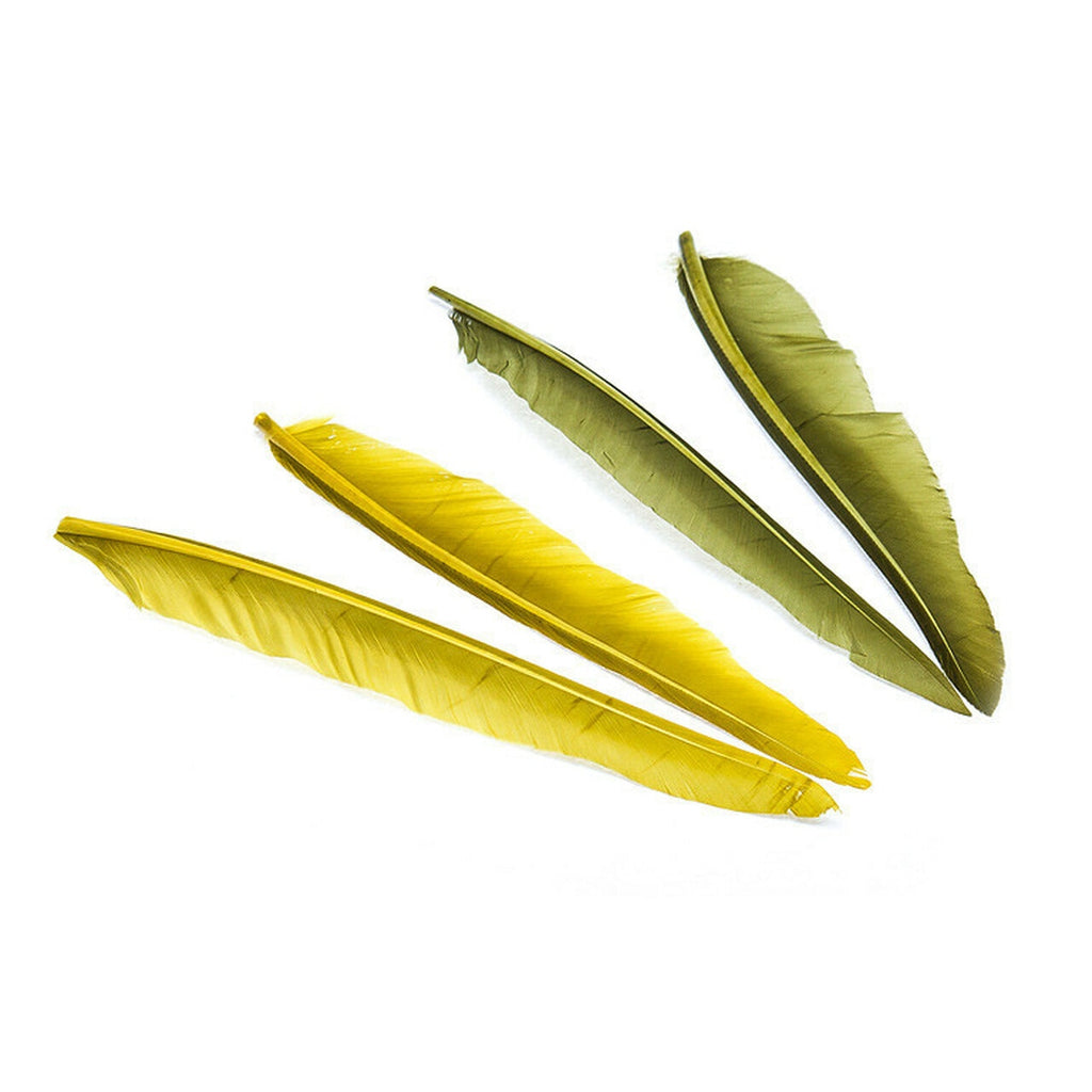 Wapsi Duck Quills -  2 Pair